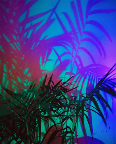Glow Neon Aesthetic Wallpaper by Neon Flashback Uune Spectral Foliage 2016 By 218 Na Blue