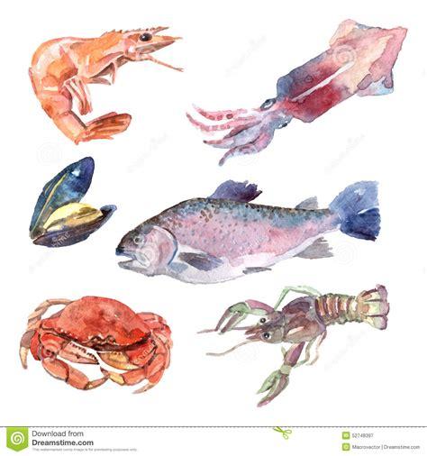 cuisine illustration watercolor sea food set stock vector image 52748397