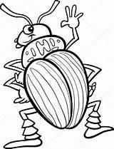 Coloring Insect Beetle Potato Kleurplaat Insects Tor Kever Aardappel Kolorowanka Insekten Stockillustratie Cartoon Owad Colorado Bugs Depositphotos Owady Kolorowanki Izakowski sketch template