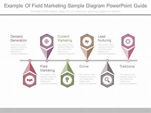 Example Of Field Marketing Sample Diagram Powerpoint Guide