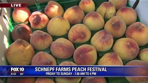 Cory Corner Schnepf Farms Peach Festival Youtube