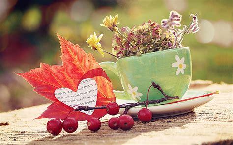 Littlebug 365: วอลเปเปอร์โทนสีแดง น่ารักสวยงาม