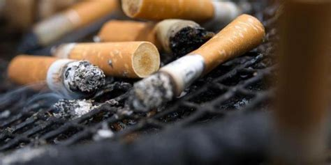 Rauchen Im Treppenhaus by Rechte Und Pflichten Im Treppenhaus