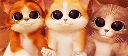 Eyes Myths Deteriorate Debunked Eyesight Dim Reading
