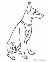 Pinscher Miniature Coloring Hunde Malvorlagen Colorir Cachorros Dibujos Doberman Designlooter Tiere 300px 89kb Imagens sketch template