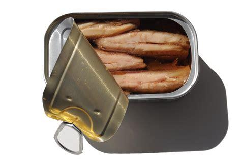 sardine cuisine canned sardines golden
