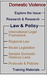 SVAW - Domestic Violence: Law and Policy
