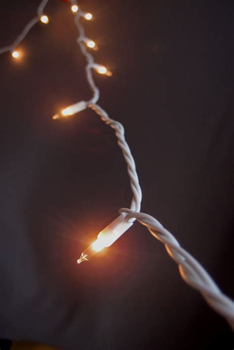 100 indoor mini string lights 60 white cord