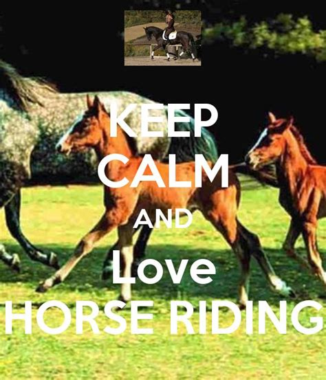 how do horses stay 50 best images about keep calm and love horses on pinterest horse necklace keep calm and carry on