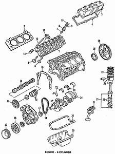 Ford Probe Timing  Gear  Engine  Set