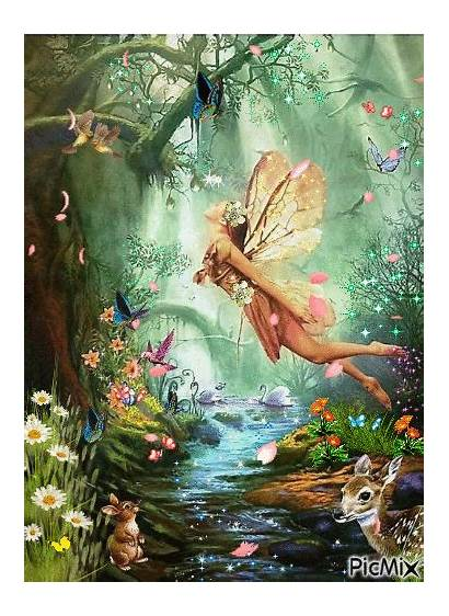 Fairy Fairies Fate Fata Hadas Mystery Owl