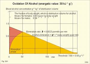 Alcohol Metabolism Chart New Human Physiology Ch 20