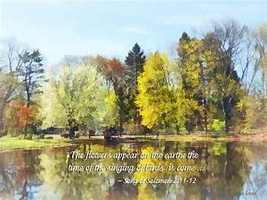Song Of Solomon 2 11-12 - The Flowers Appear Photograph by