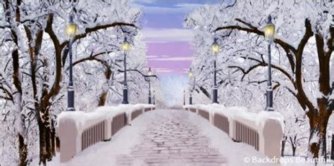 christmas in central park back drops for santa pics backdrops beautiful painted scenic backdrop rentals and sales