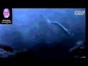 Real mermaid found incredible footage - YouTube
