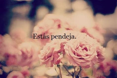 mexican quotes tumblr