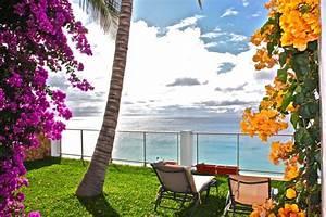 deutsch ferienwohnung mit meerblick in erster With katzennetz balkon mit palm garden fuerteventura