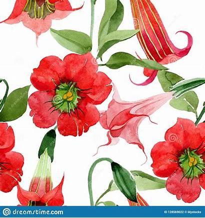 Flower Brugmansia Botanical Seamless Watercolor Floral Pattern
