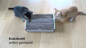 Katzenkratzbaum Selber Machen : selbst gemachtes katzen spielzeug kratzbrett follow salt pepper youtube ~ Yasmunasinghe.com Haus und Dekorationen