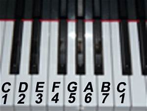 Free Online Piano Lessons and Tips | Free Online Piano ...