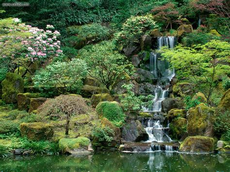 the garden portland portland japanese garden botanic garden in portland
