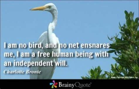 quotes  bird watching quotesgram