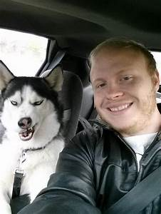 Epic Pix » Like 9gag – just funny. » Epic Husky face