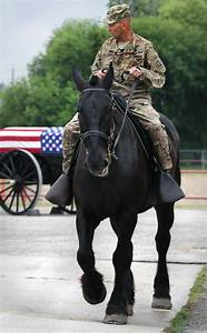 General to ride horseback in Battle of Flowers Parade ...