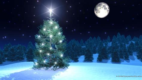 christmas tree wallpapers 1920x1080