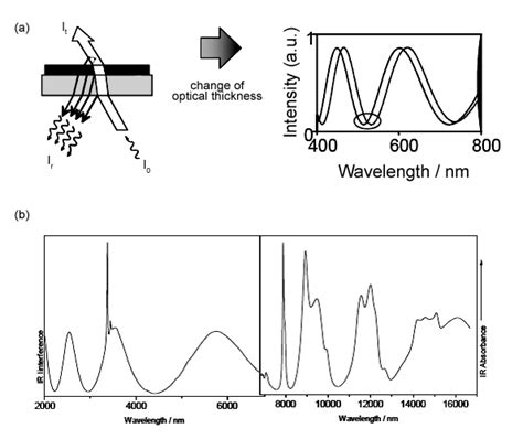 Combination of an interferometric sensing principle with ...