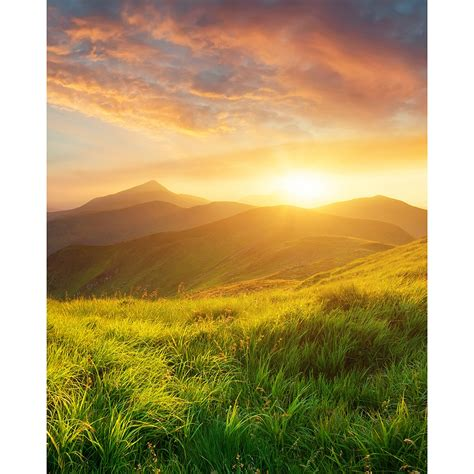 mountain scenery printed backdrop backdrop express