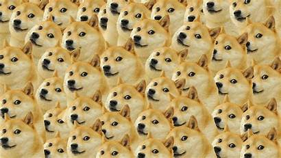 Doge Meme Pattern Wallpapers