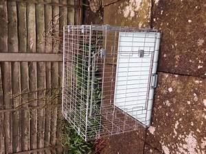 Dog crate medium size kettering northamptonshire for Dog crates for medium sized dogs
