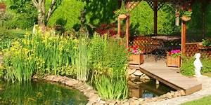 Plante Pour Bassin Extérieur : initiation aux plantes de bassin le paysagiste ~ Premium-room.com Idées de Décoration