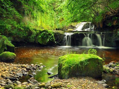 waterfall stream pond cascades gravel rocks green moss