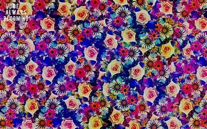 Bohemian Wallpapers Desktop Backgrounds Blooming Pixelstalk Always
