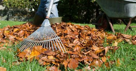 Checklists For Fall Lawns