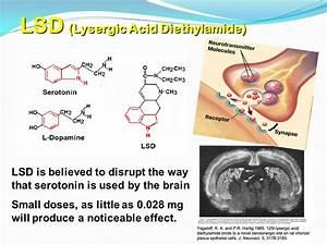 Images of Acid Drug Effects On Brain - #golfclub