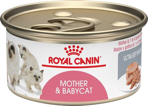 royal canin kitten royal canin babycat ultra soft mousse canned food