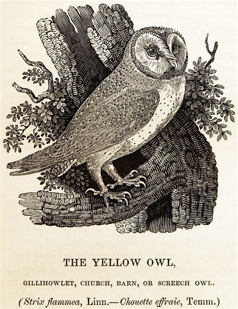 wood engraving wikipedia