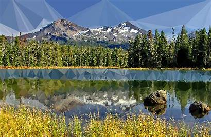 Lake Forest Tranquil Low Poly Clipart Clipground