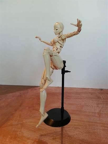 Figure Artist Poses Action Sfbt Crabfu Figures