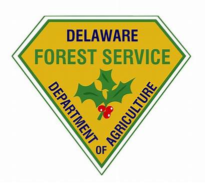 Delaware Forest Service State Fire Contest Forestry