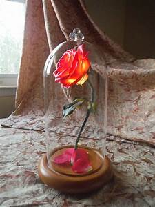 Rose In Glas : beauty and the beast mini life size lighted enchanted rose belle glass dome ebay ~ Frokenaadalensverden.com Haus und Dekorationen