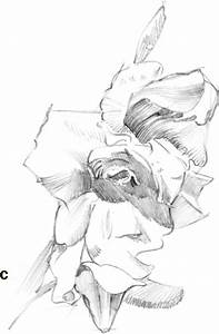 Free gladiolus drawing coloring pages