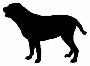 labrador retriever decal stds vinyl window bumper With kitchen cabinets lowes with horse bumper stickers