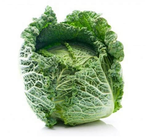 Savoy Cabbage Benefits How To Cook Recipes Substitutes