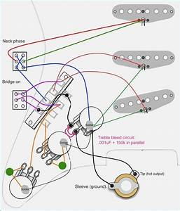 Fender Stratocaster Deluxe Wiring Diagram