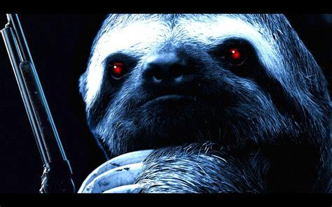Sloth Hd Desktop Wallpaper Widescreen High Definition