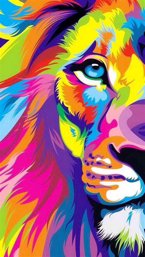 colorful lion illustration pictures   images